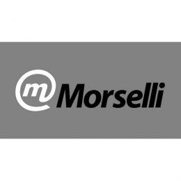 Logo Morselli