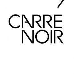 Logo Carré Noir