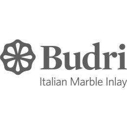 Logo Budri